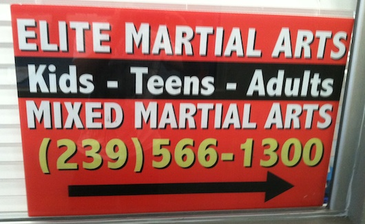 Elite Martial Arts in Naples
