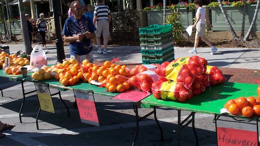 Naples Florida Farmer's Market