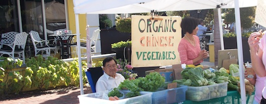 Chinese Organic Vegetables at the Farmers Market in Naples Florida