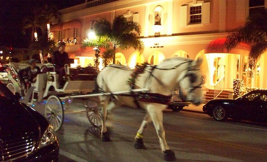 Horse Carriage in Naples Florida