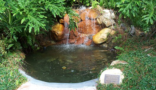 Waterfall at Rodgers Park in Naples Florida