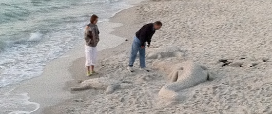 Alligator and a Sea Turtle | Sand Sculpture on the Beach | Naples Florida