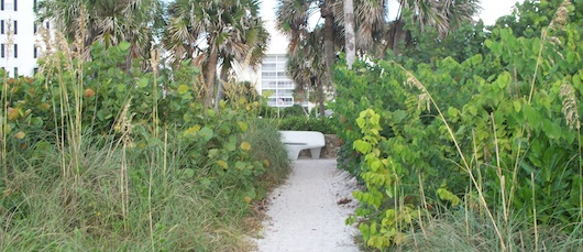 Walking back to parking lot from the beach by Doctors Pass