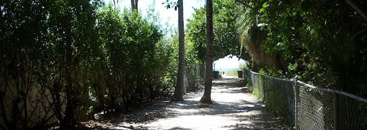 Walking towards the beach in Naples Florida