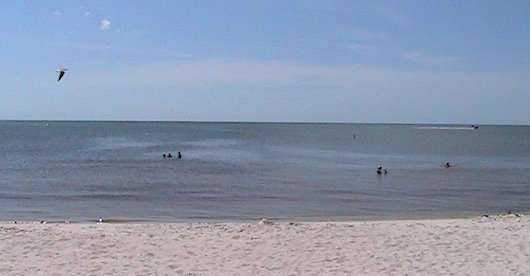 Close look at the calm gulf waters in Naples Florida
